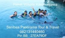 Paket Tour Karimunjawa 0318782891