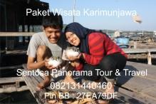 Paket Wisata Karimunjawa 0821 31440460