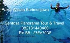 Tour Karimunjawa 0318782891